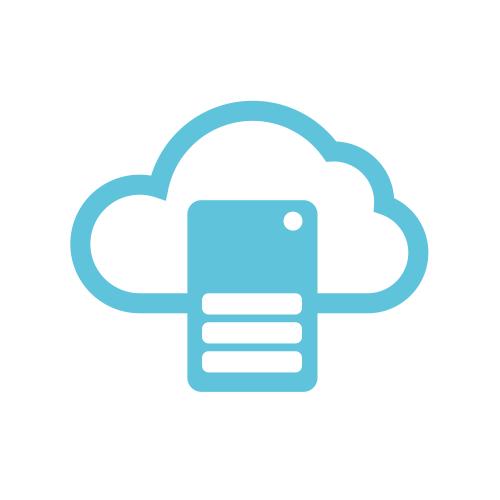ERP platform integrator